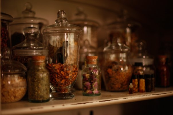 Herbs from the For Strange Women Studio